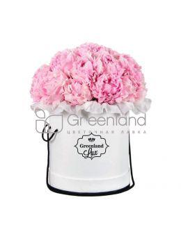Модные цветы в корзинах