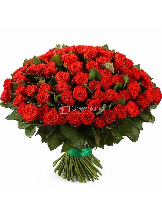 №56 Букет из 101 красных роз Премиум (Эквадор)