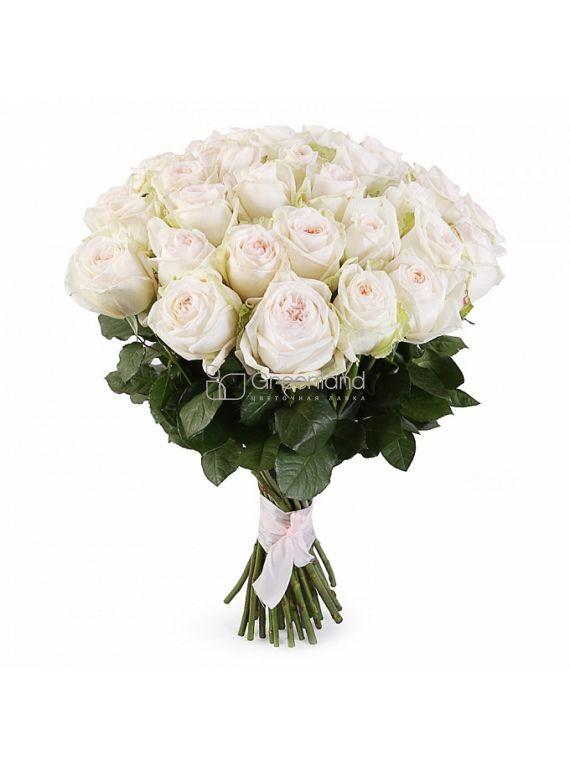 №36 21 O'hara White roses bouquet