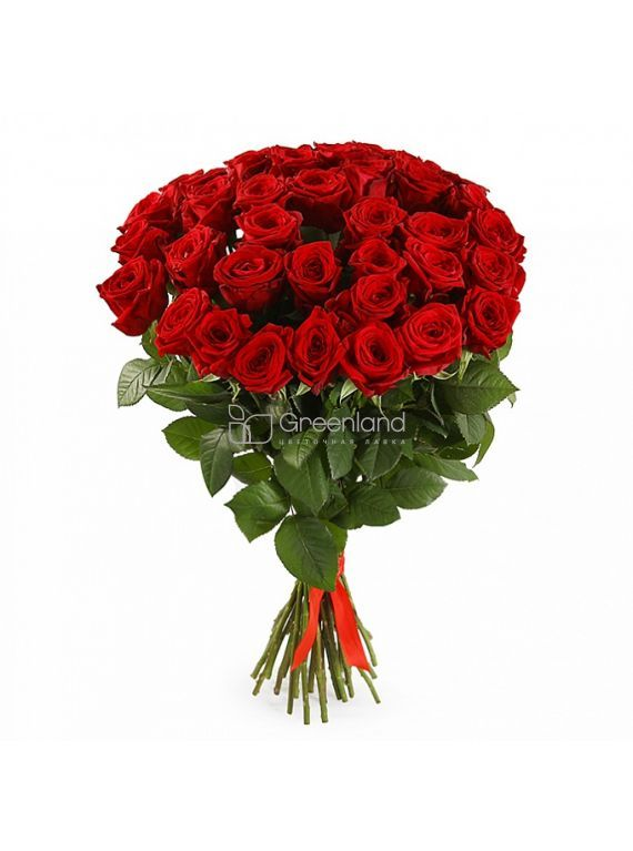 №52 35 red roses flower bouquet (size L)