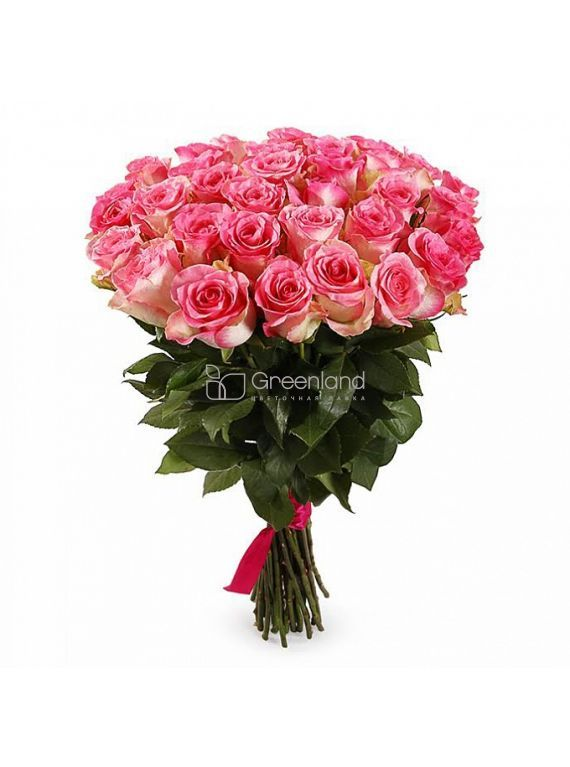 №63 35 pink roses Malibu flower bouquet