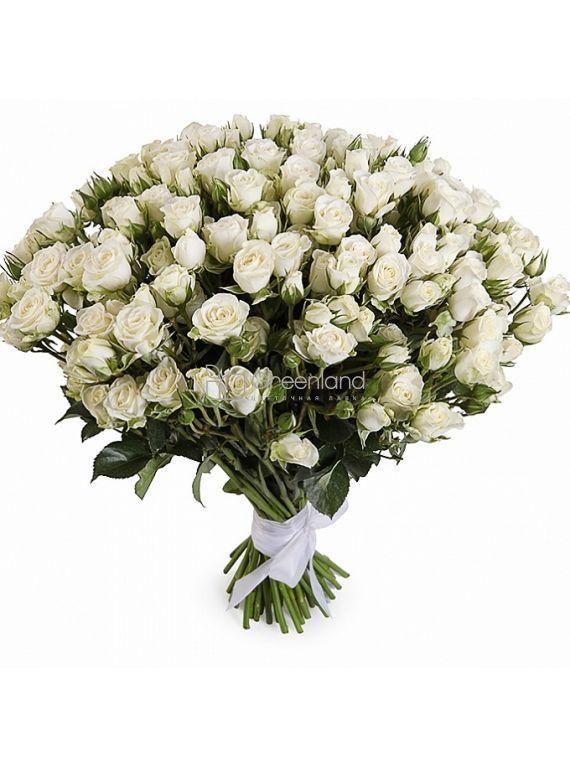 №214 Букет из 51 белой спрей розы