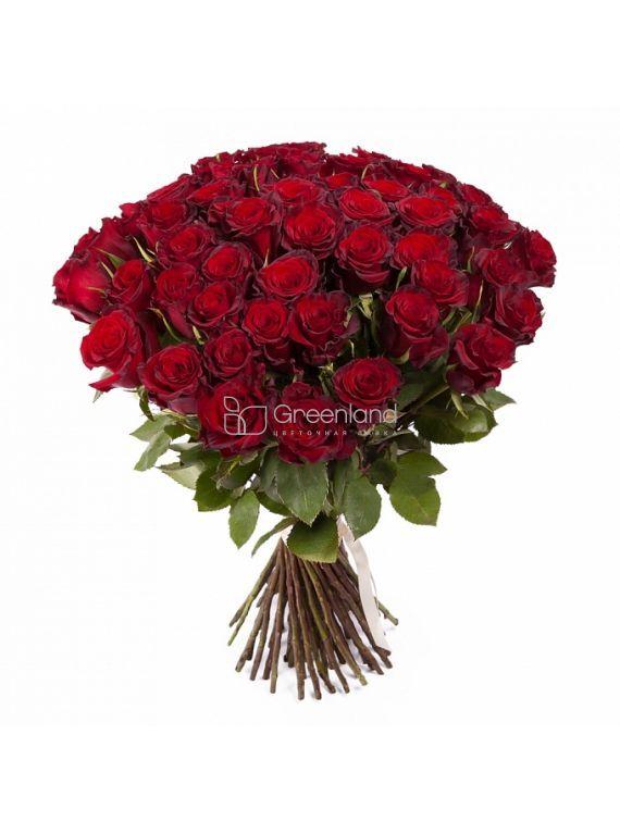 №58 Букет из 51 красной розы Премиум XL (Эквадор)