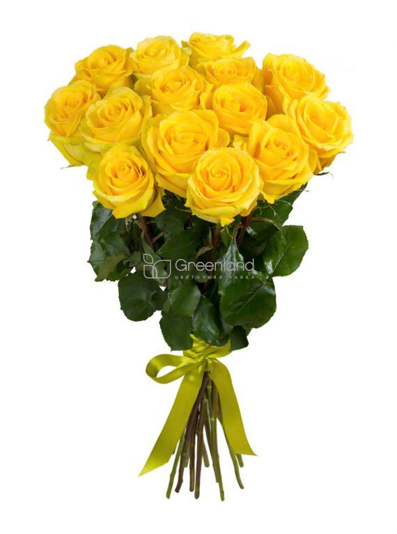 №48 15 yellow roses flower bouquet (size M)