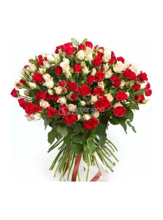 №84 Букет из 51 красной и белой спрей розы