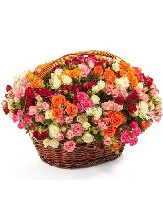 №252 101 spray roses mix colors in a basket