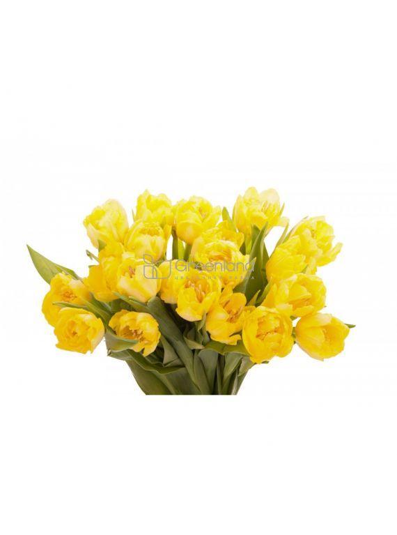 №223 Букет из 15 желтых пионовидных тюльпанов