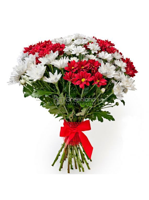 №260 Red and white chrysanthemum flowers bouquet