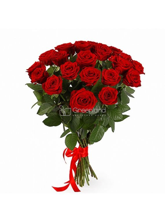 №101-1 25 red roses bouquet S
