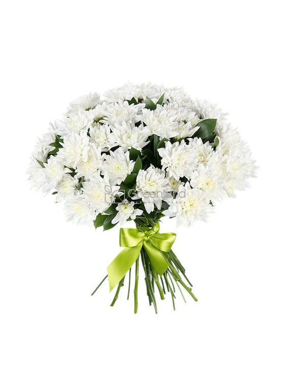 №552 Bouquet of 15 chrysanthemums and Ruscus