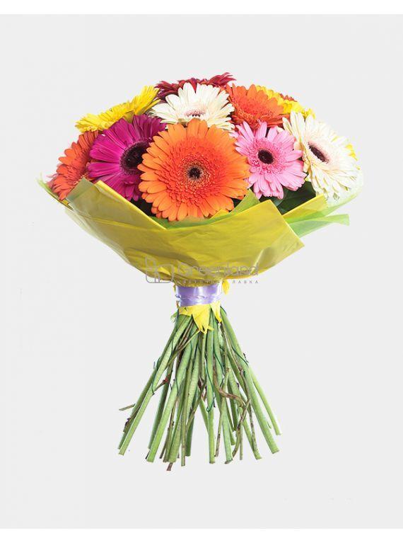 №323 Bouquet of 19 mixed gerberas