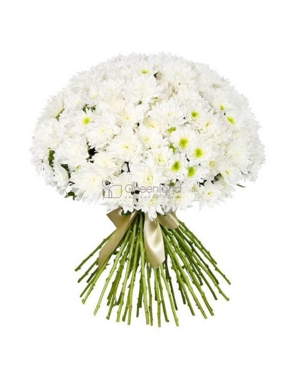 №554 Bouquet of 35 chrysanthemums