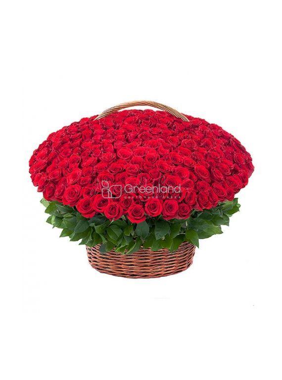 №355 501 роза красная в корзине