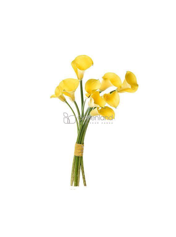 №325 Yellow callas bouquet
