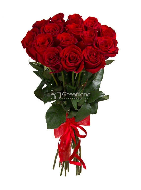 №268 15 red roses flower bouquet L