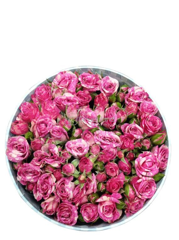 №264 Pink spray roses in round box
