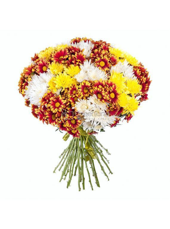 №254 Yellow, orange and white chrysanthemums flower bouquet