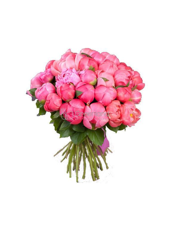 №24/4 Coral pions of bouquet